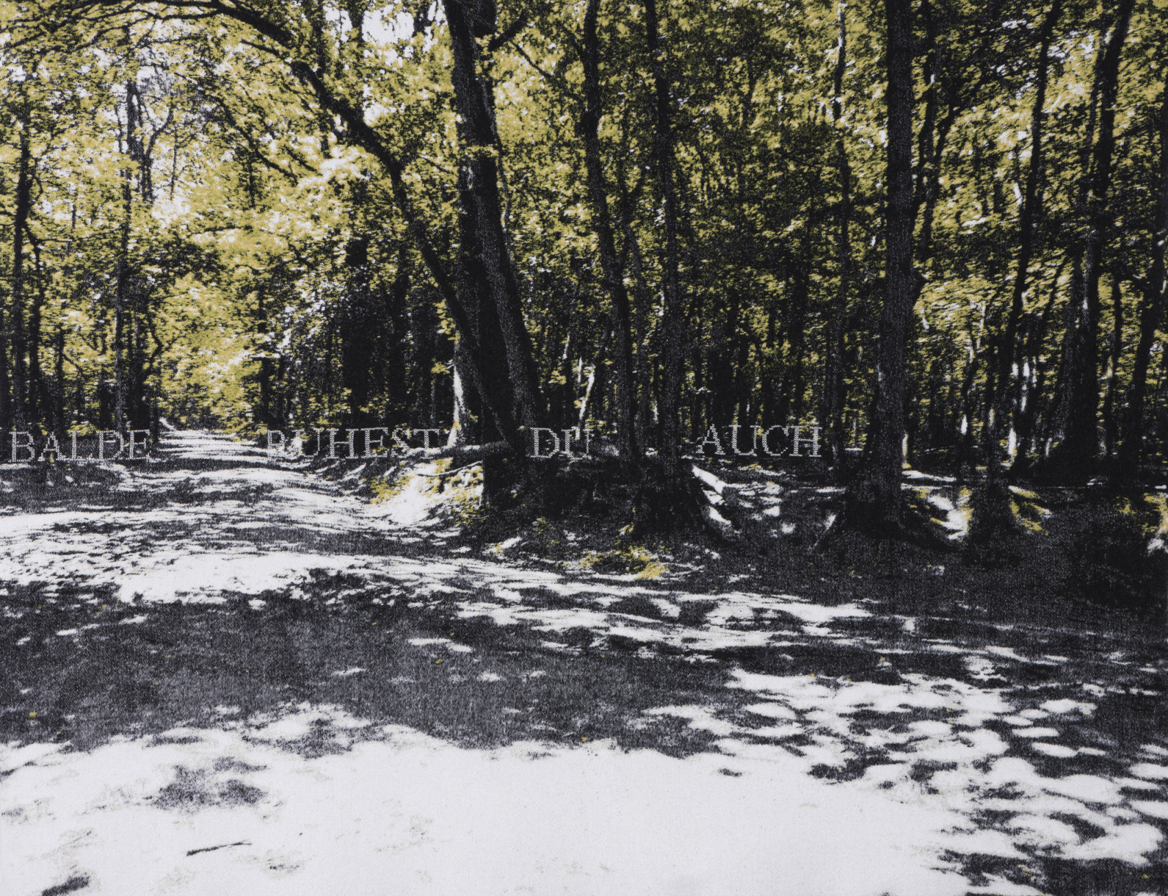 'Balde Ruhest du Auch' - (verse Goethe) Grosser Ettersberg, Weimar- Jacquard woven - double weaves - mohair -text embroideredby hand - 160 x 235 cm - 2012 -(photograph: Peter Cox)