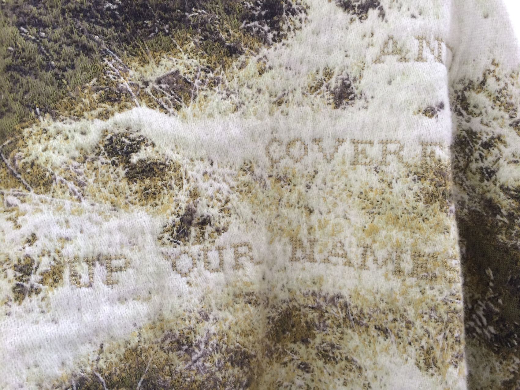 Detail 'Until the moss had reached our lips and covered up our names'(Emily Dickinson)- Jacquard woven -double weaves- mohair andcashwool -text embroideredby hand - 165 x 235 cm - 2015
