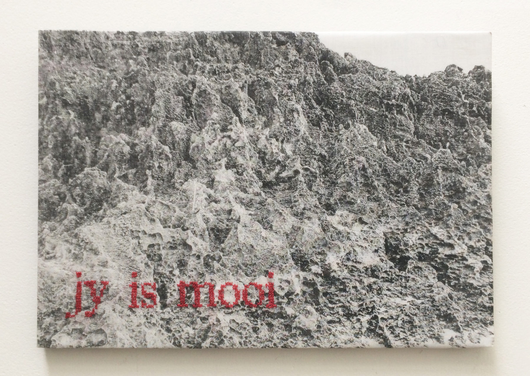 'jy is mooi' - (South Africa)- silkscreen on canvas -text embroideredby hand - 25 x 35 cm - 2014